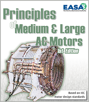 Principles of Medium & Large AC Motors
